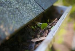 4 conseils pour nettoyer les gouttières