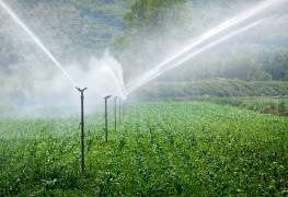 5 dispositifsd'arrosage efficaces pour votre pelouse