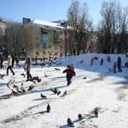 8 activités hivernales amusantes et gratuites