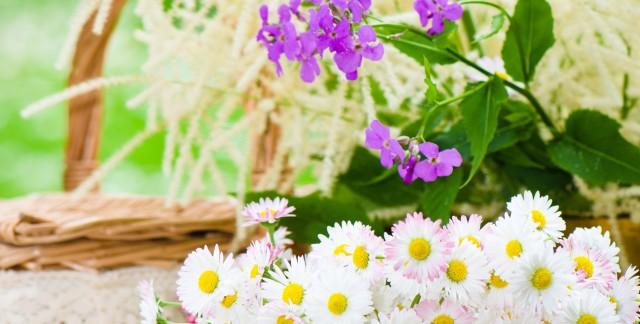 Conseils pour décorer avec des fleurs