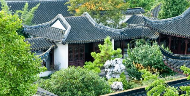 Les toits verts: la tendance croissante en éco-toiture