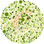 Avez-vous besoin d'un test de vision des couleurs?