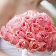 Composer un bouquet de roses