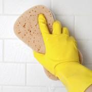 Comment se débarrasser de la moisissure noire dans la salle de bain