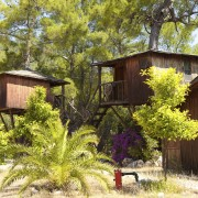 Pourquoi vous devriez essayer un hôtel dans les arbres