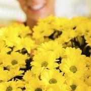 Le secret d'une composition florale colorée et économique