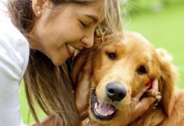 Comment choisir le chien de votre vie