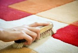 comment nettoyer lurine de chat sur votre tapis - Comment Enlever Les Taches De Sang Sur Un Matelas