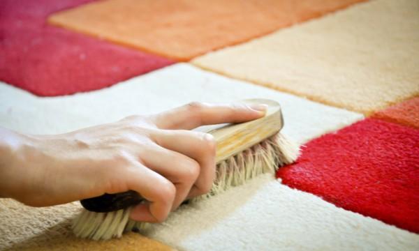 Comment nettoyer l 39 urine de chat sur votre tapis trucs - Comment nettoyer l urine sur un matelas ...