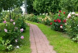 8 méthodes simples pour économiser de l'argent sur l'aménagement paysager