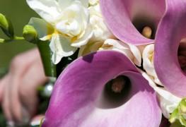 Composer un bouquet de lys pour un mariage