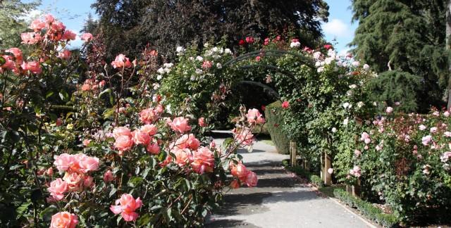 Pavée la voie vers de belles allées de jardin peu coûteuses