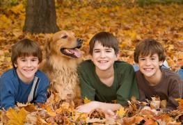 Conseils pourl'achat d'un animal de compagnie destiné àun enfant atteint du THDA