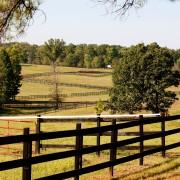 Quelques conseils pour construire une clôture de perches à peu de frais
