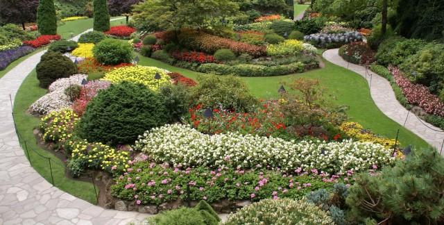 Créez votre propre jardin sensoriel