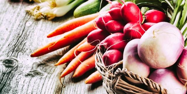 Conseilset pièges à éviter pour cultiver de très bons radis
