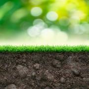 3 trucs pour connaître les sols pour mieux cultiver