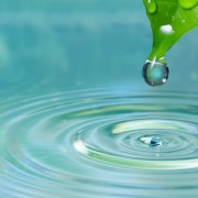 Systèmes de récupération des eaux pluviales à faire soi-même