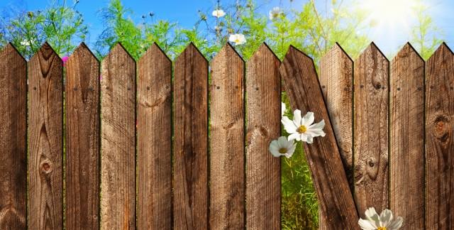 Prévention et traitement de la moisissure du bois sur une clôture