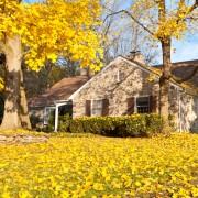 8 bons conseils de planification pour votre jardin etvotre cour