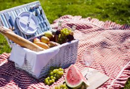 Where to buy picnic supplies in Edmonton