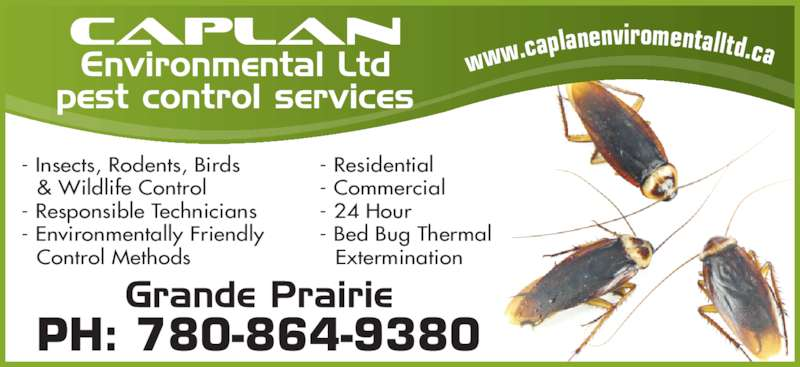 Caplan Environmental (780-864-9380) - Display Ad - - Insects, Rodents, Birds - Residential - 24 Hour - Commercial - Bed Bug Thermal  Extermination - Responsible Technicians  & Wildlife Control nviromentalltd.ca - Bed Bug Thermal PH: 780-864-9380 w.caplane - Environmentally Friendly    ww - Commercial  Control Methods  Extermination - Residential - 24 Hour    ww - Environmentally Friendly PH: 780-864-9380 - Insects, Rodents, Birds - Responsible Technicians  Control Methods  & Wildlife Control w.caplane nviromentalltd.ca