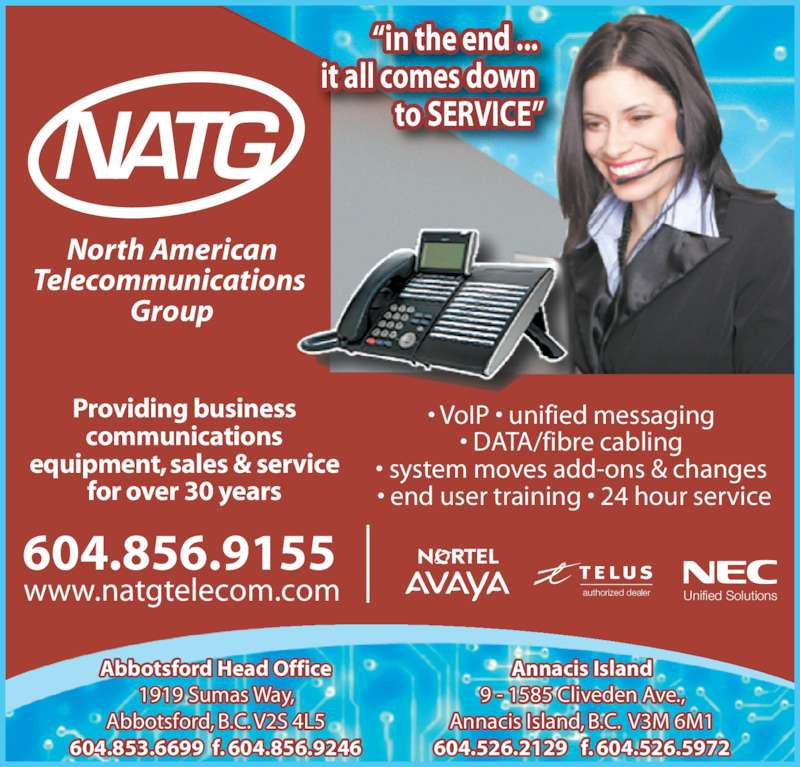 The Ad Group: North American Telecommunications Group