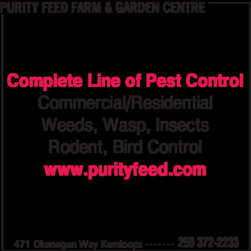 Purity Feed Farm & Garden Centre (250-372-2233) - Display Ad - PURITY FEED FARM & GARDEN CENTRE 471 Okanagan Way Kamloops 250 372-2233- - - - - - - Complete Line of Pest Control Commercial/Residential Weeds, Wasp, Insects Rodent, Bird Control www.purityfeed.com PURITY FEED FARM & GARDEN CENTRE 471 Okanagan Way Kamloops 250 372-2233- - - - - - - Complete Line of Pest Control Commercial/Residential Weeds, Wasp, Insects Rodent, Bird Control www.purityfeed.com