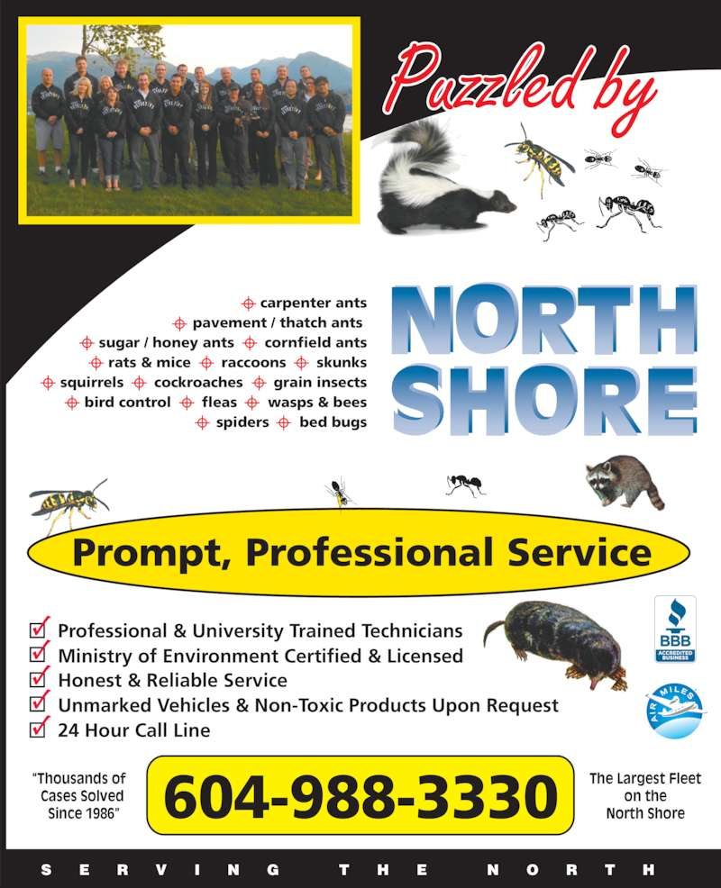 "North Shore Pest Detective Ltd (604-988-3330) - Display Ad - Ministry of Environment Certified & Licensed Honest & Reliable Service Unmarked Vehicles & Non-Toxic Products Upon Request Prompt, Professional Service 24 Hour Call Line  ""Thousands of    Cases Solved    Since 1986"" The Largest Fleet on the North Shore604-988-3330 S E R V I N G  T H E  N O R T H carpenter ants pavement / thatch ants  sugar / honey ants       cornfield ants rats & mice       raccoons       skunks squirrels       cockroaches       grain insects bird control       fleas       wasps & bees spiders       bed bugs Puzzled by Professional & University Trained Technicians Ministry of Environment Certified & Licensed Honest & Reliable Service Unmarked Vehicles & Non-Toxic Products Upon Request Prompt, Professional Service 24 Hour Call Line  ""Thousands of    Cases Solved    Since 1986"" The Largest Fleet on the North Shore604-988-3330 S E R V I N G  T H E  N O R T H carpenter ants pavement / thatch ants  sugar / honey ants       cornfield ants rats & mice       raccoons       skunks squirrels       cockroaches       grain insects bird control       fleas       wasps & bees Puzzled by Professional & University Trained Technicians spiders       bed bugs"