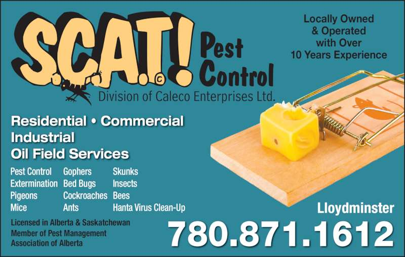 Scat Pest Control (780-871-1612) - Display Ad - 780.871.1612 Lloydminster Division of Caleco Enterprises Ltd. Pest Control Residential • Commercial Industrial Oil Field Services Locally Owned & Operated with Over 10 Years Experience Licensed in Alberta & Saskatchewan Member of Pest Management Association of Alberta Pest Control Extermination Pigeons Mice Gophers Bed Bugs Cockroaches Ants Skunks Insects Bees Hanta Virus Clean-Up 780.871.1612 Lloydminster Division of Caleco Enterprises Ltd. Pest Control Residential • Commercial Industrial Oil Field Services Locally Owned & Operated with Over 10 Years Experience Licensed in Alberta & Saskatchewan Member of Pest Management Association of Alberta Pest Control Extermination Pigeons Mice Gophers Bed Bugs Cockroaches Ants Skunks Insects Bees Hanta Virus Clean-Up