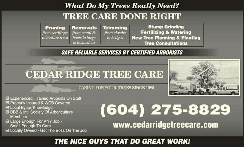 Cedar Ridge Tree Care (604-275-8829) - Display Ad - to mature trees Removals from small & CARING FOR YOUR  TREES SINCE 1986 SAFE RELIABLE SERVICES BY CERTIFIED ARBORISTS What Do My Trees Really Need? Stump Grinding Fertilizing & Watering basic to large & hazardous Trimming from shrubs BBB & Int'l Society Of Arboriculture Members Large Enough For ANY Job -  to hedges (604) 275-8829 www.cedarridgetreecare.com THE NICE GUYS THAT DO GREAT WORK! What Do My Tr s Really Need? Experienced, Trained Arborists On Staff Small Enough To Care Properly Insured & WCB Covered Local Bylaw Knowledge Locally Owned - Get The Boss On The Job  TREE CARE DONE RIGHT New Tree Planning & Planting Tree Consultations Pruning from seedlings
