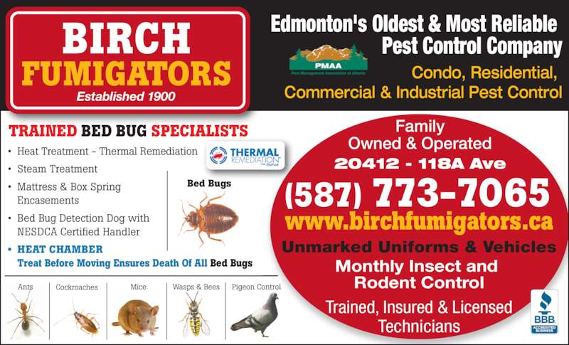 Birch Fumigators (780-482-5544) - Display Ad - Edmonton's Oldest & Most Reliable  Pest Control Company ? Heat Treatment - Thermal Remediation ? Steam Treatment ? Mattress & Box Spring  Encasements ? Bed Bug Detection Dog with  NESDCA Certified Handler ? HEAT CHAMBER  Treat Before Moving Ensures Death Of All Bed Bugs Mice Commercial & Industrial Pest Control BIRCH FUMIGATORS Established 1900 Condo, Residential,  Pigeon ControlWasps & Bees Trained, Insured & Licensed Technicians (587) 773-7065 TRAINED BED BUG SPECIALISTS Bed Bugs CockroachesAnts Ltd Pest Management Association of Alberta PMAA Family Owned & Operated 20412 - 118A Ave www.birchfumigators.ca Unmarked Uniforms & Vehicles Monthly Insect and  Rodent Control Edmonton's Oldest & Most Reliable  Pest Control Company ? Heat Treatment - Thermal Remediation ? Steam Treatment ? Mattress & Box Spring  Encasements ? Bed Bug Detection Dog with  NESDCA Certified Handler ? HEAT CHAMBER  Treat Before Moving Ensures Death Of All Bed Bugs Mice Commercial & Industrial Pest Control BIRCH FUMIGATORS Established 1900 Condo, Residential,  Pigeon ControlWasps & Bees Trained, Insured & Licensed Technicians (587) 773-7065 TRAINED BED BUG SPECIALISTS Bed Bugs CockroachesAnts Ltd Pest Management Association of Alberta PMAA Family Owned & Operated 20412 - 118A Ave www.birchfumigators.ca Unmarked Uniforms & Vehicles Monthly Insect and  Rodent Control