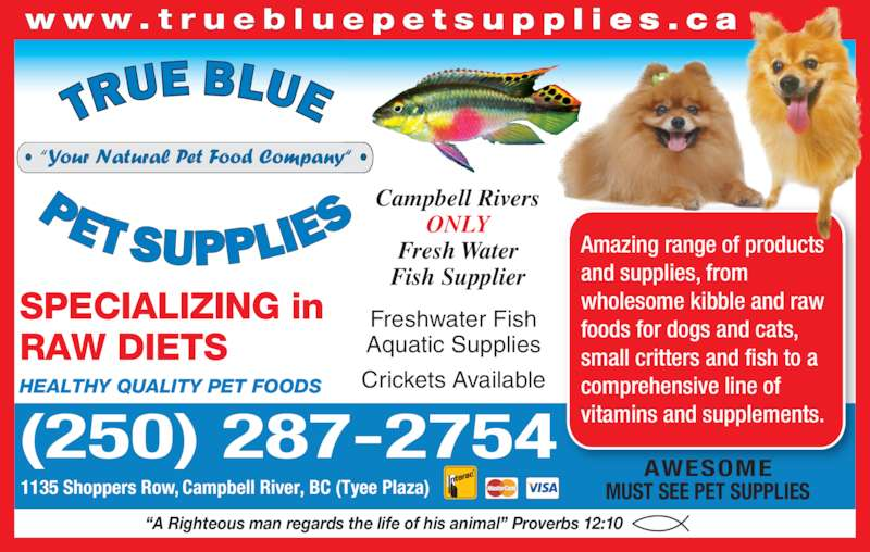 True Blue Pet Supplies (250-287-2754) - Display Ad - SPECIALIZING in  RAW DIETS HEALTHY QUALITY PET FOODS ?A Righteous man regards the life of his animal? Proverbs 12:10 (250) 287-2754 1135 Shoppers Row, Campbell River, BC (Tyee Plaza) Amazing range of products  and supplies, from  wholesome kibble and raw  foods for dogs and cats,  small critters and fish to a  comprehensive line of  vitamins and supplements. w w w . t r u e b l u e p e t s u p p l i e s . c a AWESOME MUST SEE PET SUPPLIES Freshwater Fish Aquatic Supplies Crickets Available Campbell Rivers ONLY Fresh Water Fish Supplier  SPECIALIZING in  RAW DIETS HEALTHY QUALITY PET FOODS ?A Righteous man regards the life of his animal? Proverbs 12:10 (250) 287-2754 1135 Shoppers Row, Campbell River, BC (Tyee Plaza) Amazing range of products  and supplies, from  wholesome kibble and raw  foods for dogs and cats,  small critters and fish to a  comprehensive line of  vitamins and supplements. w w w . t r u e b l u e p e t s u p p l i e s . c a AWESOME MUST SEE PET SUPPLIES Freshwater Fish Aquatic Supplies Crickets Available Campbell Rivers ONLY Fresh Water Fish Supplier