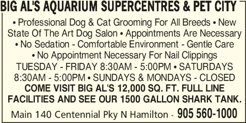 Big Al's (905-560-1000) - Display Ad - π Professional Dog & Cat Grooming For All Breeds π New State Of The Art Dog Salon π Appointments Are Necessary π No Sedation - Comfortable Environment - Gentle Care π No Appointment Necessary For Nail Clippings TUESDAY - FRIDAY 8:30AM - 5:00PM π SATURDAYS 8:30AM - 5:00PM π SUNDAYS & MONDAYS - CLOSED COME VISIT BIG AL'S 12,000 SQ. FT. FULL LINE FACILITIES AND SEE OUR 1500 GALLON SHARK TANK. Main 140 Centennial Pky N Hamilton - 905 560-1000 BIG AL'S AQUARIUM SUPERCENTRES & PET CITY