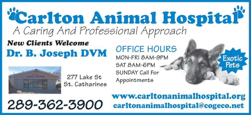 Carlton Animal Hospital (289-362-3900) - Display Ad - Carlton Animal Hospital A Caring And Professional Approach New Clients Welcome Dr. B. Joseph DVM 277 Lake St  St. Catharines 289-362-3900 Exotic Pets OFFICE HOURS MON-FRI 8AM-9PM SAT 8AM-6PM SUNDAY Call For Appointments www.carltonanimalhospital.org