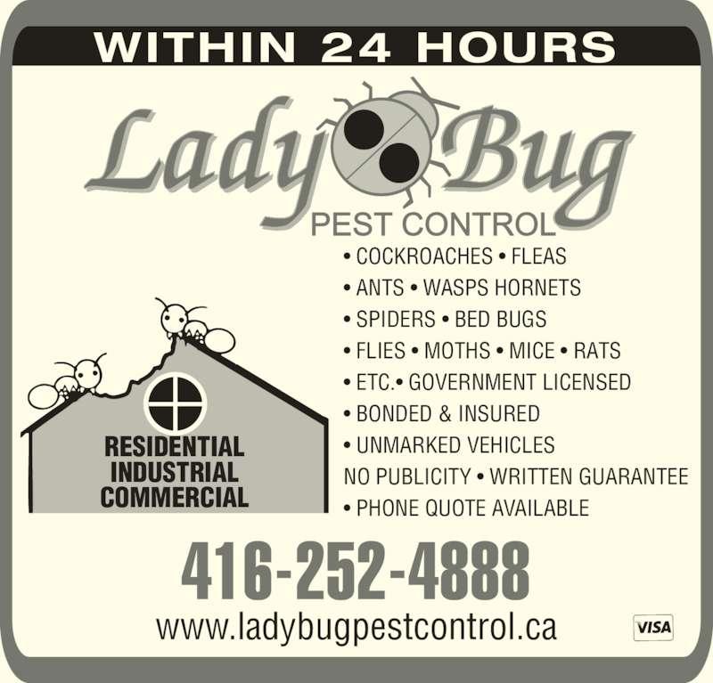 Lady Bug Pest Control Etobicoke On 18 Leavenworth