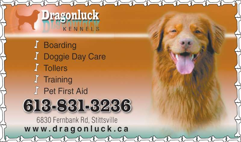 Dragonluck Kennels (613-831-3236) - Display Ad - Boarding Doggie Day Care Tollers Training Pet First Aid w w w . d r a g o n l u c k . c a 6830 Fernbank Rd, Stittsville