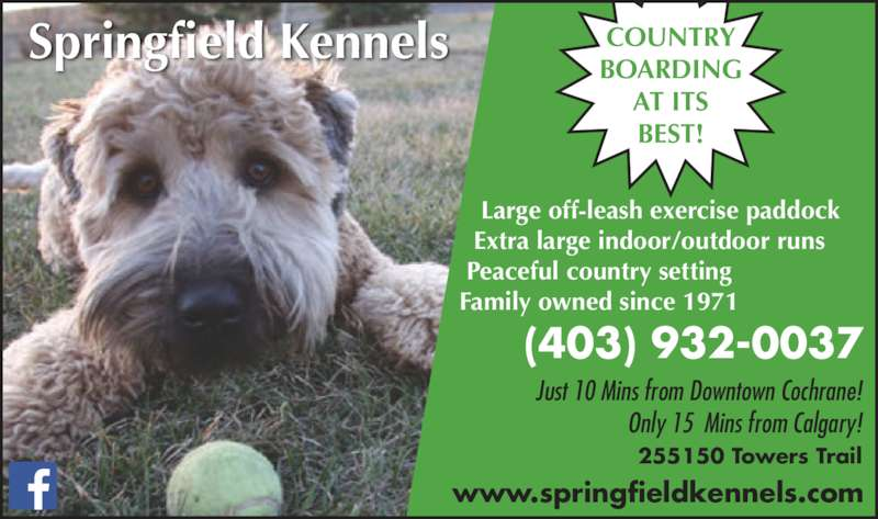 Springfield Kennels (4039320037) - Display Ad - Springfield Kennels     Large off-leash exercise paddock    Extra large indoor/outdoor runs   Peaceful country setting  Family owned since 1971 COUNTRY BOARDING AT ITS BEST! (403) 932-0037 Just 10 Mins from Downtown Cochrane! Only 15  Mins from Calgary! 255150 Towers Trail www.springfieldkennels.com