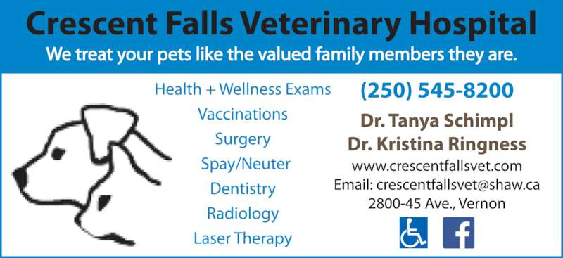 Crescent Falls Veterinary Hospital Opening Hours 2800