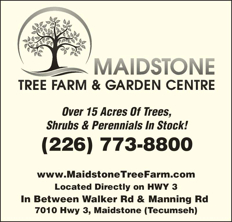Maidstone Tree Farm (519-737-2999) - Display Ad - www.MaidstoneTreeFarm.com Located Directly on HWY 3 In Between Walker Rd & Manning Rd. Over 15 Acres Of Trees, 7010 Hwy 3, Maidstone (Tecumseh) (226) 773-8800 Shrubs & Perennials In Stock!