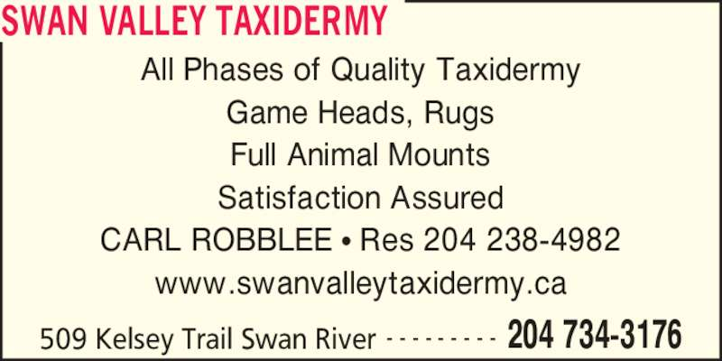 Swan Valley Taxidermy (204-734-3176) - Display Ad - SWAN VALLEY TAXIDERMY 509 Kelsey Trail Swan River 204 734-3176- - - - - - - - - All Phases of Quality Taxidermy Game Heads, Rugs Full Animal Mounts Satisfaction Assured CARL ROBBLEE ? Res 204 238-4982 www.swanvalleytaxidermy.ca