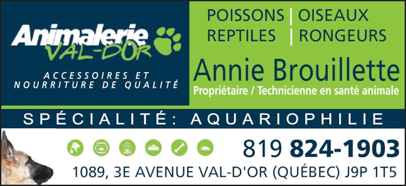 Animalerie Val D'Or Inc (819-824-1903) - Annonce illustrée======= - 1089, 3E AVENUE VAL-D'OR (QU?BEC) J9P 1T5 819 824-1903 Annie Brouillette Propri?taire / Technicienne en sant? animale POISSONS   OISEAUX REPTILES     RONGEURS