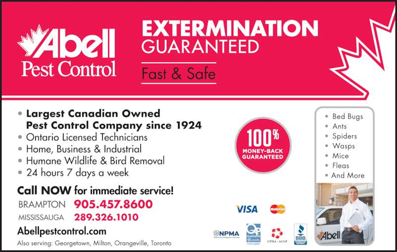 Abell Pest Control (905-457-8600) - Display Ad -