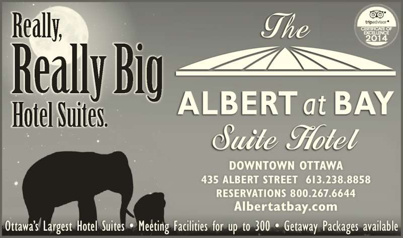 Albert At Bay Suite Hotel (613-238-8858) - Display Ad - RESERVATIONS 800.267.6644 Albertatbay.com Ottawa?s Largest Hotel Suites ? Meeting Facilities for up to 300 ? Getaway Packages available Really,  Really Big Hotel Suites. DOWNTOWN OTTAWA 435 ALBERT STREET  613.238.8858
