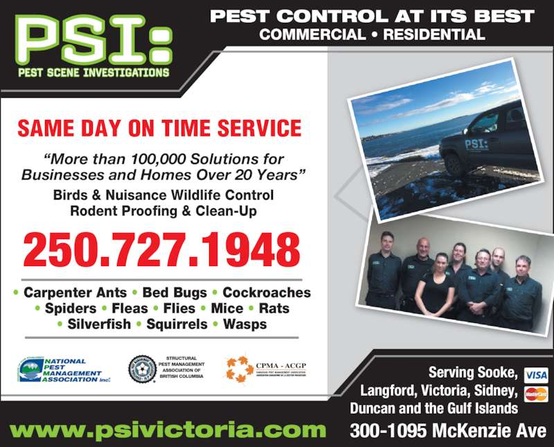 Pest Scene Investigations (250-727-1948) - Display Ad - Rodent Proofing & Clean-Up ? Carpenter Ants ? Bed Bugs ? Cockroaches ? Spiders ? Fleas ? Flies ? Mice ? Rats ? Silverfish ? Squirrels ? Wasps 250.727.1948 Birds & Nuisance Wildlife Control PEST CONTROL AT ITS BEST COMMERCIAL ? RESIDENTIAL Serving Sooke, Langford, Victoria, Sidney, Duncan and the Gulf Islands www.psivictoria.com 300-1095 McKenzie Ave SAME DAY ON TIME SERVICE ?More than 100,000 Solutions for Businesses and Homes Over 20 Years? Rodent Proofing & Clean-Up ? Carpenter Ants ? Bed Bugs ? Cockroaches ? Spiders ? Fleas ? Flies ? Mice ? Rats ? Silverfish ? Squirrels ? Wasps 250.727.1948 Birds & Nuisance Wildlife Control PEST CONTROL AT ITS BEST COMMERCIAL ? RESIDENTIAL Serving Sooke, Langford, Victoria, Sidney, Duncan and the Gulf Islands www.psivictoria.com 300-1095 McKenzie Ave SAME DAY ON TIME SERVICE ?More than 100,000 Solutions for Businesses and Homes Over 20 Years?