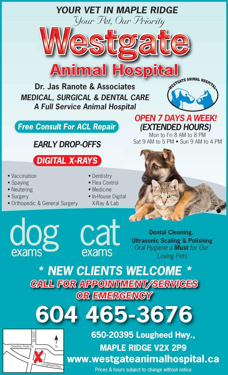 westgate animal hospital opening hours 650 20395 lougheed hwy ad