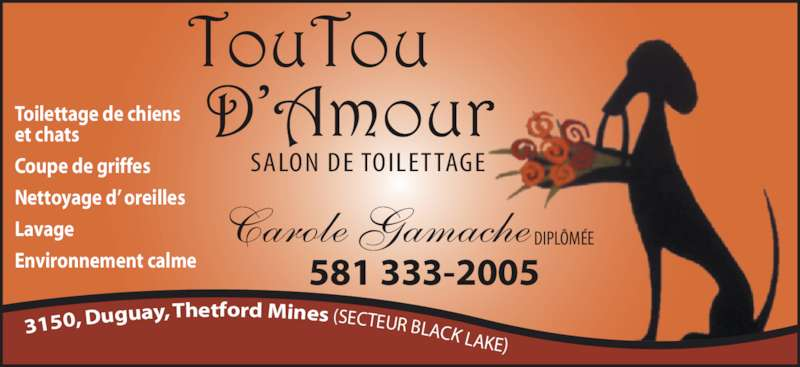 A mon toutou d 39 amour salon de toilettage thetford mines for Salon de toilettage montreal