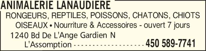 Animalerie Lanaudière (450-589-7741) - Annonce illustrée======= - ANIMALERIE LANAUDIERE OISEAUX ? Nourriture & Accessoires - ouvert 7 jours 1240 Bd De L'Ange Gardien N       L'Assomption - - - - - - - - - - - - - - - - - - - 450 589-7741 RONGEURS, REPTILES, POISSONS, CHATONS, CHIOTS
