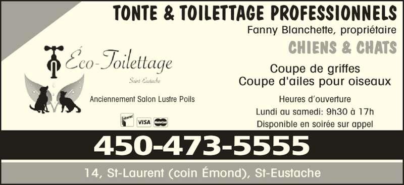 Salon lustre poils horaire d 39 ouverture 14 rue saint for Domon st eustache heure d ouverture