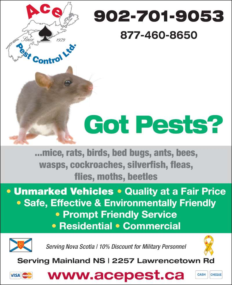 Ace Pest Control Ltd (902-465-8118) - Display Ad - 902-701-9053 877-460-86501979Since Got Pests? ...mice, rats, birds, bed bugs, ants, bees, wasps, cockroaches, silverfish, fleas, flies, moths, beetles www.acepest.ca Serving Mainland NS | 2257 Lawrencetown Rd Serving Nova Scotia | 10% Discount for Military Personnel   ? Unmarked Vehicles ? Quality at a Fair Price ? Safe, Effective & Environmentally Friendly ? Prompt Friendly Service ? Residential ? Commercial